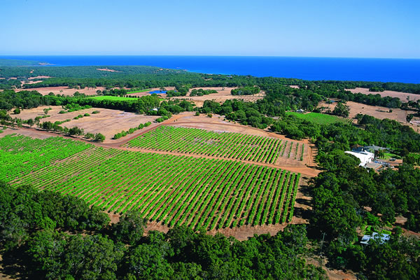 Aerial view of Wise Vineyards, located in Meelup. Picture: Tourism Western Australia.